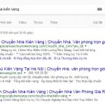 chuyen-nha-kien-vang-vang-thau-lan-lon